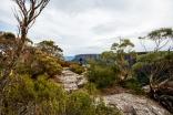 Scrubby and rocky peak